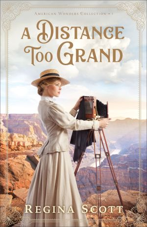 A Distance Too Grand cover